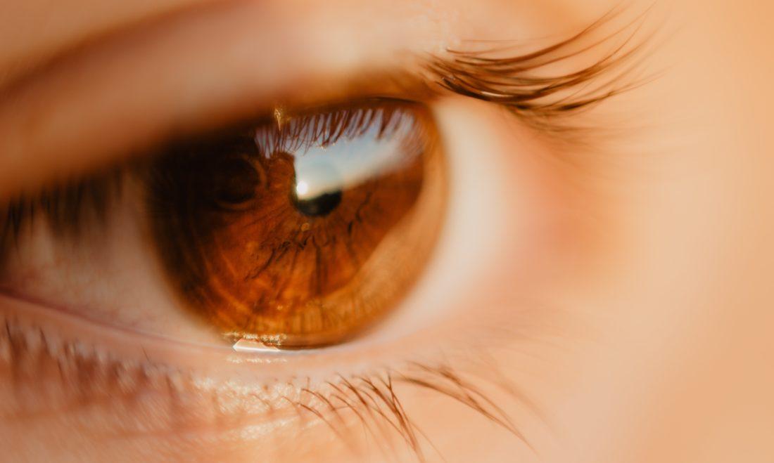 Presbytie - Lentilles Progressives Optique Debauge